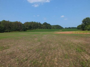Farm land for sale in norton ohio